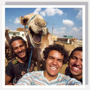BFACUG003312 Camelfie – Greetings card